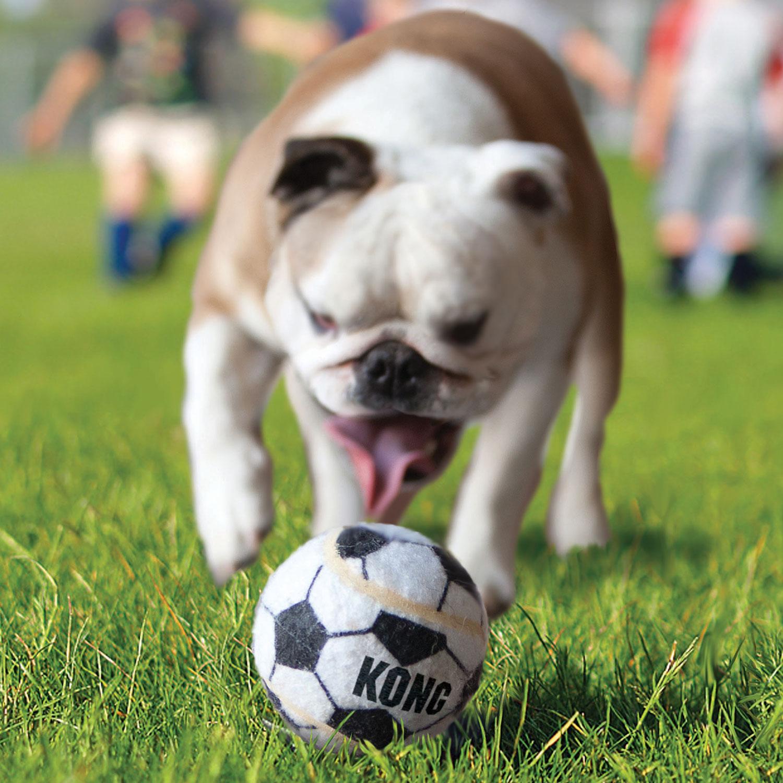 Hundespielzeug Kong Sport Balls